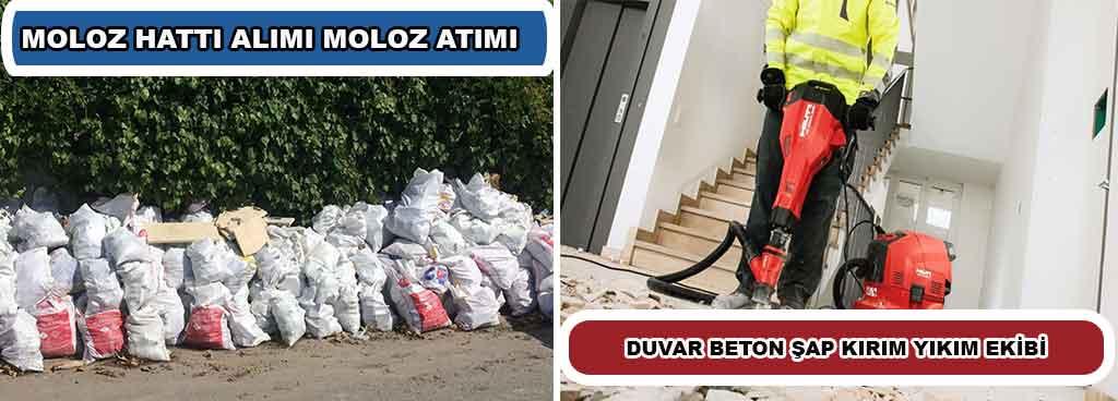 MOLOZ-Alimi-anasayfa-min